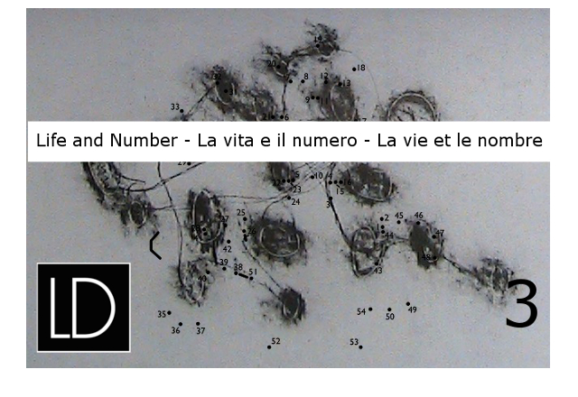3. Life and Number
